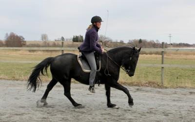 Finurliga Flisan och Camilla. 30 mars 2014.