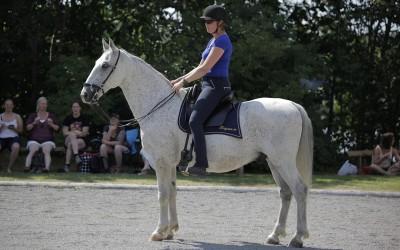 ARena- hästfestival på Sparreholms Slott den 25 juli 2014. Camilla & Maestro.