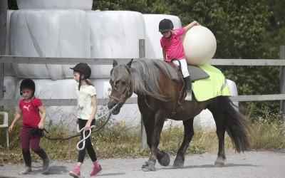 Ovanligt hästdagläger juli 2014. Alma håller i bollen på Safir.