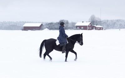 Vinterridning. Camilla på Flisan. 25 januari 2015.