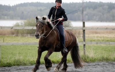 Camilla på härliga Safir. 10 maj 2014.