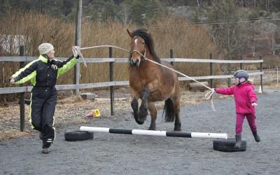 Hubbe. Ovanligt hästdagläger 13 april 2013