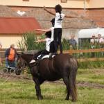 nynas-2011-7