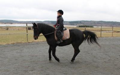 Carolina rider lektion på Excell. 27 mars 2015.