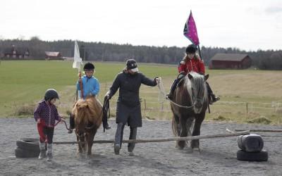 Ovanligt hästdagläger 12 april 2014.