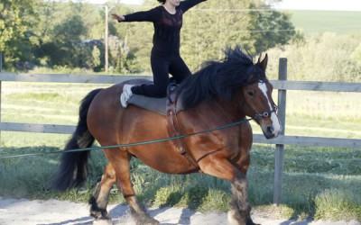 Vuxen Voltigeträning 4 juni 2015- Ullis i galopp på Bellman