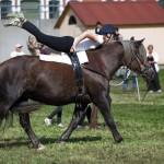 nynas-2009-4