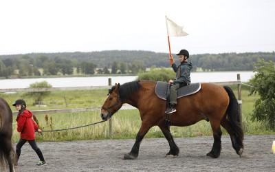 Ovanligt hästdagläger juli 2018. Elsa leder Elliot på Bellman.