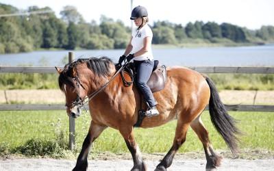 Ar-kurs 16 augusti 2015. Maria rider Hubbe.