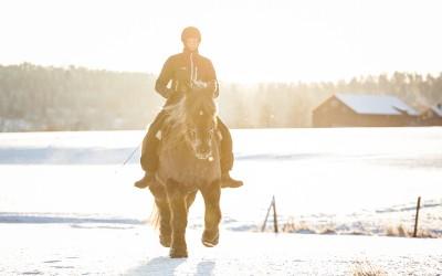 Vinterträning. Camilla på Safir. 6 januari 2016.