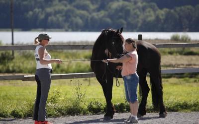 Ar-kurs 16 aug 2015. Camilla undervisar Kikki med sin egen häst Eros.