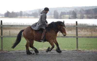 Camilla tränar Hubbe 9 april 2016.