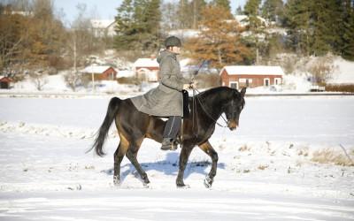 Camilla på Excell. 12 november 2016.