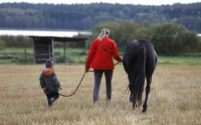 Liten & stor och en häst på väg ner till hagen. 24 september 2016.