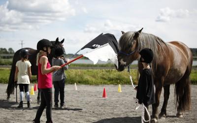 Ovanligt hästdagläger juli 2012