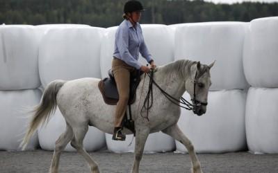 Camilla rider på Maestoso. 16 juli 2014.