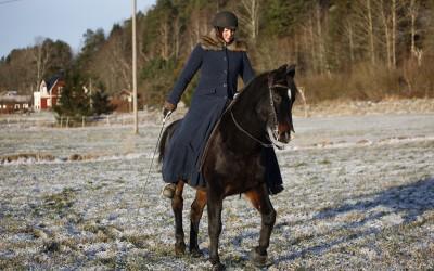 Camilla på Excell. 26 dec 2014.