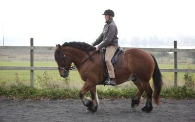Camilla rider Hubbe. 5 oktober 2014.