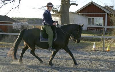 Kjell & Flisan mars2012