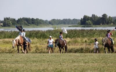 Ovanligt hästläger 25 juli 2013.