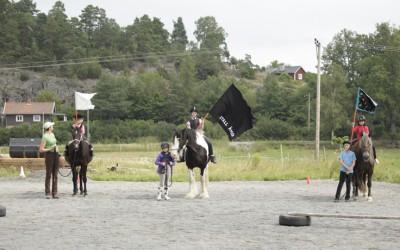 Ovanligt hästdagläger juli 2011