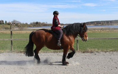 Åsa rider lektion på Bellman. 22 april 2015.
