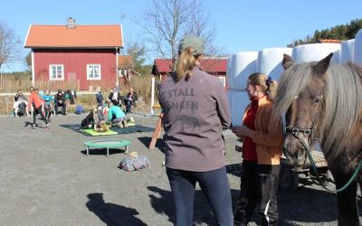 En barngrupp från Stockholm Voltige är på besök och tränar på Ängens hästar. 10 april 2016.