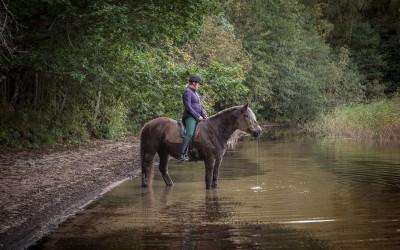 Stillhet och ljudet av vattendroppar. Camilla på Safir. 30 sep 2015.