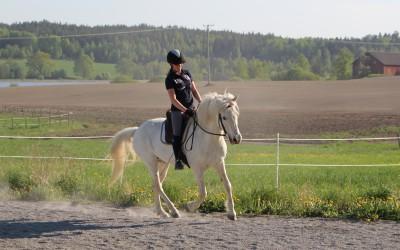 Johanna rider lektion på Mille. 14 maj 2018.